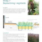 Bilag 2_ Beplantning i regnbede_Page_1